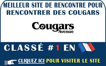 Passage en revue du site Cougars-Avenue en France
